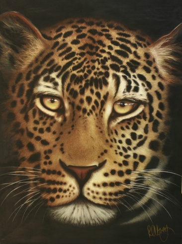 Ngala Leopard